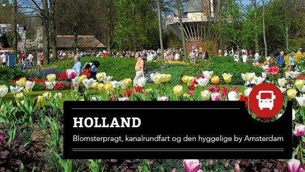 Blomsterrejse til Holland - kanaler & tulipaner