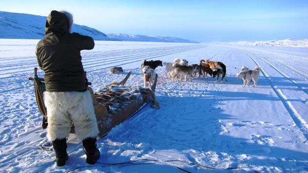 Grønland - Vinter