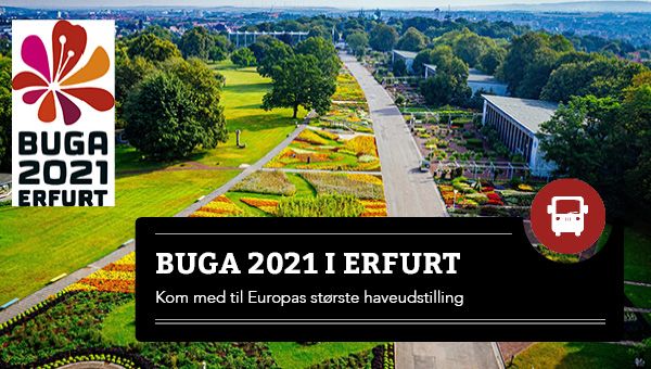 BUGA 2021 i Erfurt - 6 dage