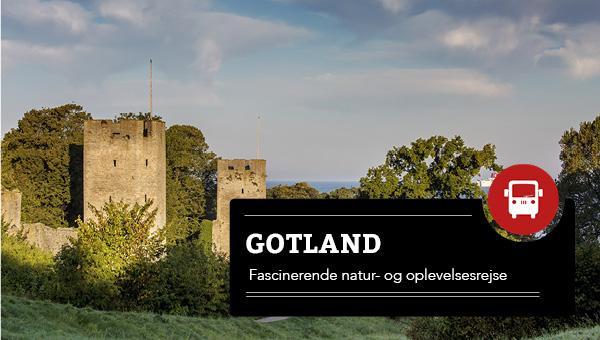 Gotland 2021