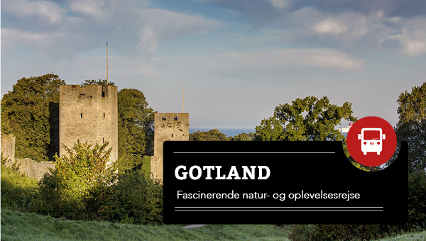 Gotland 2020